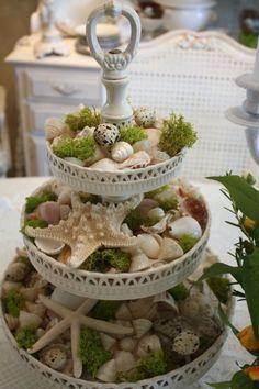 idea for displaying shells, rocks, etc; Nature Exploration Station