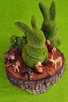 Mossy bunnies
