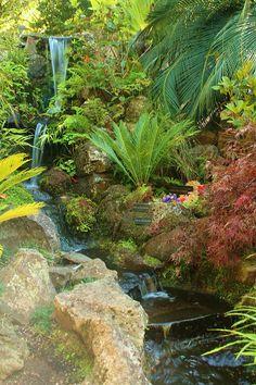 Tropical Garden Pond In Thailand | Living Garden | Pinterest ... Garten Ideen Tropisch Exotisch Bilder