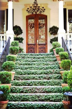 Stately front entrance; paver steps with trailing ivy, rows of potted greenery, and hand carving on the double doors