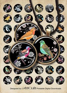 DECO BIRDS - Digital Collage Sheet.  ArtCult Printable Images are great for your art and craft projects.  These are self-print digital files. INSTANT DOWNLOAD!