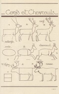draw a reindeer - french art tutorial
