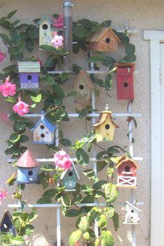 Birdhouse Trellis