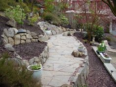 Exactly what I was looking for! terraced hillside garden