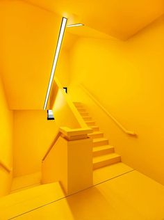 all yellow everything yellow, interior inspiration - yellow Yellow Aesthetic Pastel, Aesthetic Colors, Pastel Yellow, Shades Of Yellow, Mellow Yellow, Yellow Flowers, Neon Yellow, Mustard Yellow, Color Yellow