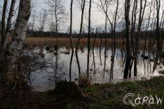 http://blog.qdraw.nl/overijssel/het-veen-van-vriezenveen/ Het veen van Vriezenveen