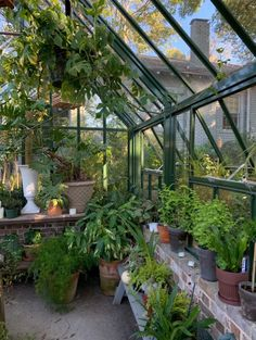 Plant Aesthetic, Aesthetic Rooms, House Goals, Pretty Pictures, Houseplants, Mother Nature, Future House, Indoor Plants, Planting Flowers