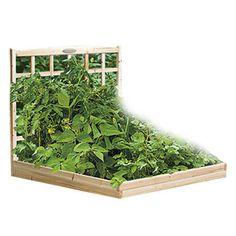 Napa Garden Bed at Joss & Main