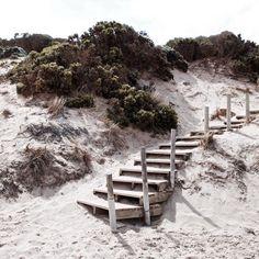 ... Jan Juc beach. #canon5dmarkii #janjuc #australia #step #beach #beachlife #colour #victoria #greatoceanroad #stairway by thisboyfacesnorth
