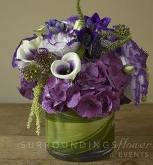 A showy collection of plum and purple tones, displayed to perfection in