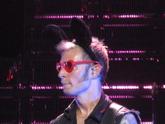 Mike Dirnt, King For a Day