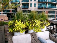 HGTV is presenting examples of small space gardens and microgardening…