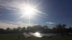 Residents complain about sun glare given off by town's solar panel Solar Panels, Assessment, Facade, Plants, Solar Panel Lights, Sun Panels, Facades, Flora, Plant