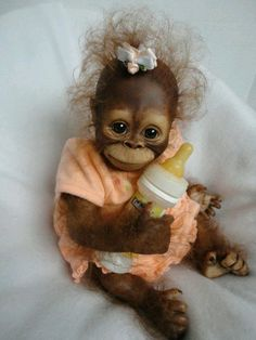 Cute baby orangutan dressed in orange and clasping her bottle. Cute Creatures, Beautiful Creatures, Animals Beautiful, Cute Baby Animals, Animals And Pets, Funny Animals, Baby Orangutan, Cute Monkey, Monkey Doll