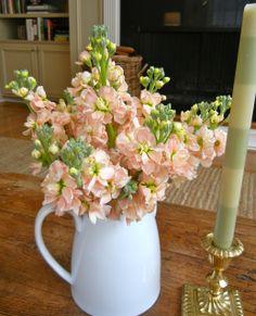Die 166 Besten Bilder Von Hochzeitsblumen Wedding Bouquets