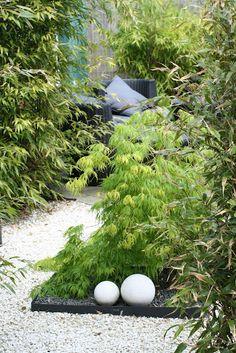 A lovely garden in Limhamn, Sweden (Purple Area)