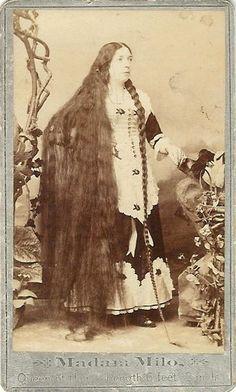Madam Milo Queen of Hair, Length 6 ft 2 in, 1880's