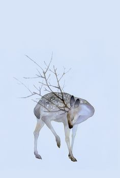 """chinaism: """" 鹿 (Deer)Finished Work by 鹿菏 the previous one """""""