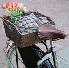 Vintage Dutch Bike - TweedRide