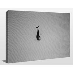 FramedArt.com Craig Dietrich 'Lonely Dolphin' Underwater Photography Wall Art