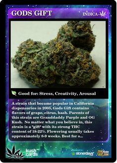 Gods Gift | Repined By 5280mosli.com | Organic Cannabis College | Top Shelf Marijuana | High Quality Shatter