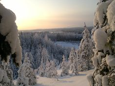 Winter time in Finland. Winter Time, Finland, Environment, Spaces, Photography, Life, Outdoor, Outdoors, Photograph