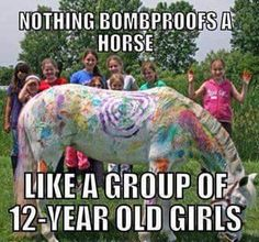 bomb proof - Horses Funny - Funny Horse Meme - - bomb proof Horses Funny Funny Horse Meme bomb proof The post bomb proof appeared first on Gag Dad. The post bomb proof appeared first on Gag Dad. Funny Horse Memes, Funny Horses, Funny Animals, Cute Animals, Horse Humor, Horse Puns, Funny Memes, Horse Camp, My Horse