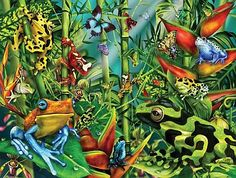 Frog Frenzy - Jigsaw Puzzle by Sunsout (discon) 300 Piece Puzzles, Jigsaw Puzzles For Kids, Quality Time, Cool Things To Make, Recycling, Wraps, Gift Wrapping, Cool Stuff, Artist