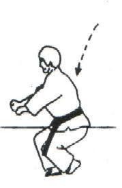 Resultado de imagen de gedan kosa uke