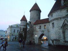 Centro histórico de Tallinn (José Manuel Anes, 2014) Beautiful Castles, Environment, Mansions, Landscape, House Styles, Home Decor, Castles, Centre, Scenery