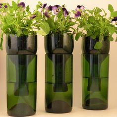Upcycle your Wine and Beer Bottles into these fabulous Self Watering Planters that are ideal for Herbs and Flowers. Be sure to check out the Plastic Bottle version too!