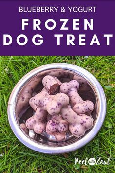 Healthy refreshing frozen dog treat recipe only has three ingredients- blueberries, yogurt, and bananas. Dogs love pupsicles on hot summer days. Puppy Treats, Diy Dog Treats, Healthy Dog Treats, Healthy Brain, Dog Biscuit Recipes, Dog Food Recipes, Dog Popsicles, Easy Dog Treat Recipes, Frozen Dog Treats