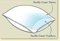 DownAround Pillow - Pacific Coast Feather Company