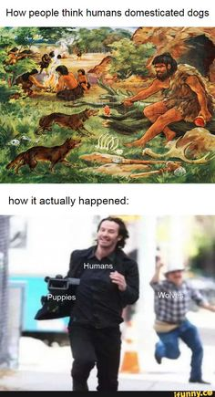 Crazy Funny Memes, Really Funny Memes, Stupid Funny Memes, Funny Relatable Memes, Haha Funny, Funny Posts, Funny Cute, Hilarious, Animal Jokes