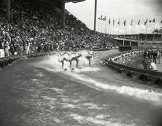 We found this photo from the 1962 Seattle World's Fair that features women water skiing inside of Memorial Stadium at Seattle Center. This is so cool! Photo from The Seattle Times - photo by George Carkonen.