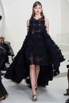 Christian Dior Spring 2014 Couture Collection Photos - Vogue