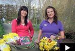 Tui Garden | Bulb Growing Guide