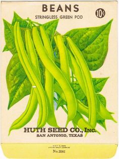 Antique Green Bean Seed Packet from Huth by GardenCollector