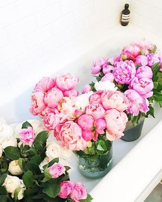www.littlerugshop.com my bathtubs full of pretty props from @bloomnation. best kinda shoot props! by sfgirlbybay