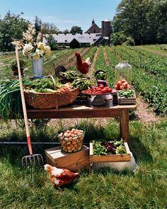 farm fresh...