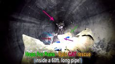 Hope For Paws - Epic CAT rescue down a 60ft. long pipe!  Please share.