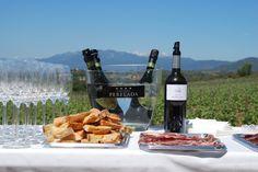 En la Finca Espolla http://www.castilloperelada.com/conocenos/vinedos/espolla/