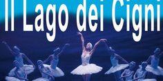 Il lago dei cigni in programma al Teatro di Cagli, sabato 18 febbraio