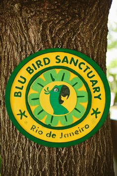 Blu Bird Sanctuary sign for Rio 1st Birthday Party
