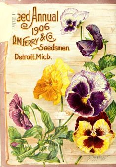 Back cover of 1906 D.M. Ferry Co. seed annual
