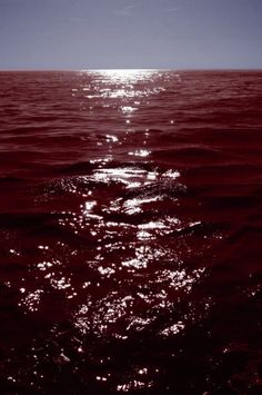 Image discovered by †Cult Fawn†. Find images and videos about aesthetic, red and sea on We Heart It - the app to get lost in what you love. Maroon Aesthetic, Water Aesthetic, Blood Art, Bloodborne, Red Sea, Neon Genesis Evangelion, Character Aesthetic, Aesthetic Pictures, Dark Red