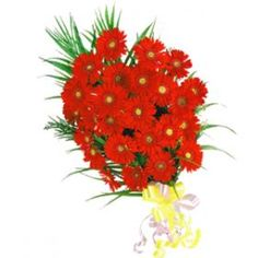 Our Charming Gerberas Bouquet is more appropriate for Sending your Warm Regards With. Send these through Shop2Nellore.
