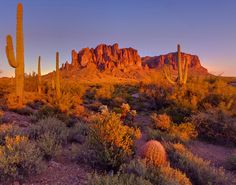 """Apache junction, Arizona. Beautiful desert, and sunsets. mountain in the picture is called """"Superstition mountain"""" Lived in Phoenix in the late 70's. Loved it!"""