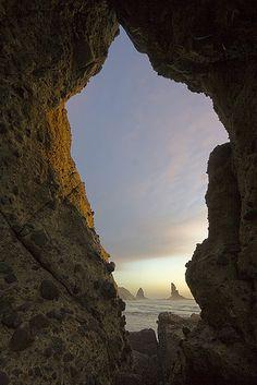 Bethells-Beach-North-Island-New-Zealand | von Lee Duguid