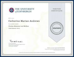 I'm qualified in chicken welfare and behaviour from the University of Edinburgh, Scotland, UK. Food For Chickens, Raising Backyard Chickens, Keeping Chickens, Hatching Chickens, Silkie Chickens, Pet Chickens, Chicken Eating, Chicken Feed, Healthy Chicken